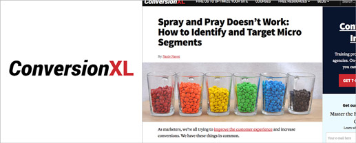 Spray and Pray Doesn't Work: How to Identify and Target Micro Segments