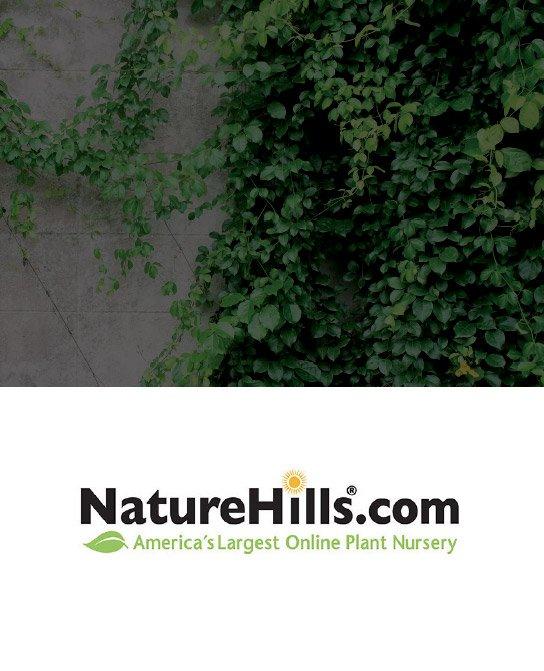 NatureHills@x2
